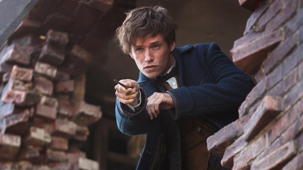 Newt Scamander (Eddie Redmayne) searches for magical creatures.