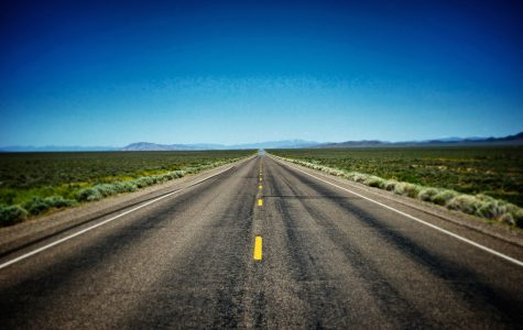 The Quirky Road to College