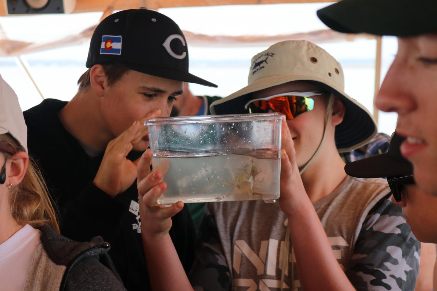 Landlocked Colorado baseball players enjoy getting up close and personal with sea creatures between games and practices at Amelia Island, Florida, over Spring Break 2018.